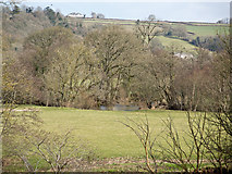 SS6613 : Little Dart Pool where the Little Dart River meets the River Taw by Roger A Smith
