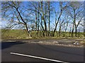 SJ7951 : Audley: entrance to sewage farm off Alsager Road by Jonathan Hutchins