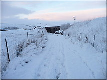 SD7992 : The Pennine Bridleway approaching Dandrymire Viaduct by Christine Johnstone