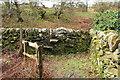 NX5956 : Steps in the Dyke by Billy McCrorie