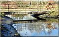 J3675 : Footbridge, Victoria Park, Belfast (March 2015) by Albert Bridge