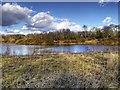 SJ8281 : Prince Albert Fishing Lake (Rossmere) by David Dixon