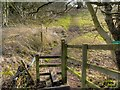 SJ8180 : Footpath towards Saltersley Moss by David Dixon