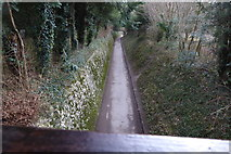 TQ1352 : Looking south down the bridleway at Polesden Lacey by Shazz