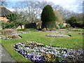 TQ2286 : Crocuses in Gladstone Park by Marathon