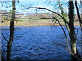 NY9964 : The River Tyne downstream of Corbridge Bridge by Mike Quinn