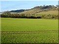 SU8095 : Farmland, Piddington by Andrew Smith