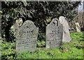 SX3173 : Gravestones, Linkinhorne by Derek Harper