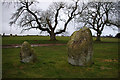 NY5737 : Long Meg and Her Daughters by Ian Taylor