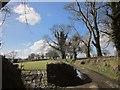 SX3173 : Lane from Linkinhorne by Derek Harper