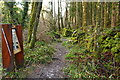 NX4858 : Burnside Trail with Information Board by Billy McCrorie