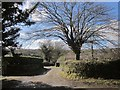 SX3071 : Farm track, Browda by Derek Harper