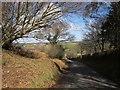 SX2972 : Lane to Plushabridge by Derek Harper