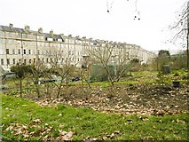ST7465 : Bath, allotments by Mike Faherty