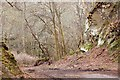 NT2540 : Entrance to Venlaw quarry, Peebles by Jim Barton