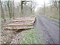 ST8753 : Clanger Wood, timber by Mike Faherty
