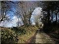 SX2977 : Lane near Coad's Green by Derek Harper