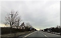 SJ5411 : Layby and power lines over A5 by John Firth