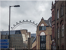 TQ3179 : London Eye as seen from Webber Street, London SE1 by Christine Matthews