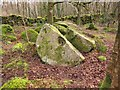 SX6492 : Broken millstone by Richard Dorrell