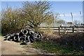 TA1452 : Tyre flytip, near Dunnington by Paul Harrop