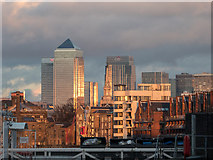 TQ3680 : Canary Wharf from London SE16 by Christine Matthews