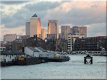 TQ3680 : Canary Wharf as seen from Bermondsey Wall East, London SE16 by Christine Matthews