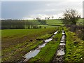 SP8219 : Track and farmland, Hardwick by Andrew Smith