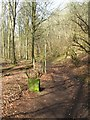 SE9434 : East Dale path and boundary stone by Gordon Hatton