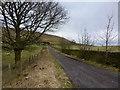 SD8117 : Track to Fecit Farm by John Darch