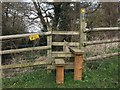 SJ6453 : Stile on Worleston FP3 by Jonathan Hutchins