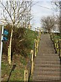 SJ6452 : Steps up to Shropshire Union Canal from Chester Road, Nantwich by Jonathan Hutchins