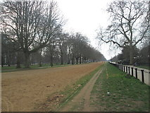 TQ2779 : Rotten Row, Hyde Park by John Slater