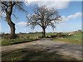 TM2080 : Ingram's Lane, Brockdish by Adrian Cable