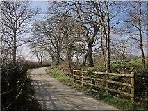 SX2591 : Lane to Troswell by Derek Harper