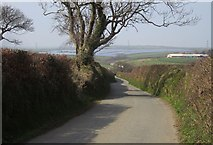 SX2592 : Lane to Caudworthy Bridge by Derek Harper