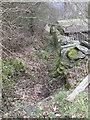 SE0419 : Footpath - Fiddle Lane by Betty Longbottom