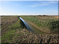 TL3884 : Ditch by the former railway line by Hugh Venables