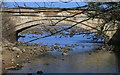 NZ8612 : Stone bridge over East Row Beck by Pauline E
