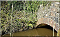J3888 : Dam run off, Carrickfergus - March 2015(2) by Albert Bridge