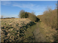 TL3883 : Cutting through Ferry Hill by Hugh Venables