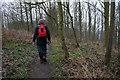 SE8150 : Chalkland Way in Pocklington Wood by Ian S