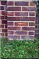 SU7573 : Benchmark on Warren Road wall pier by Roger Templeman
