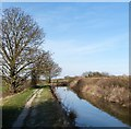 SP9012 : Wendover Arm - East of Drayton Beauchamp by Rob Farrow