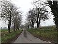 TM2585 : Church Lane, Redenhall by Geographer