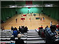 TQ4490 : Spectators at badminton tournament, Redbridge by David Hawgood
