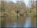 SU9869 : Wick Pond, Windsor Great Park by Alan Hunt