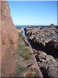 NT6779 : Coastal East Lothian : Meet On The Ledge by Richard West