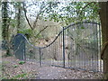 TQ4878 : Railings on the edge of the chalk pit in Lesnes Abbey Woods by Marathon
