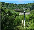 SO7463 : Fingerpost along Camp Lane by Mat Fascione